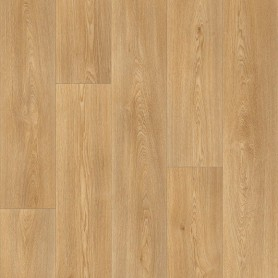 Линолеум Stars Columbian OAK 236М
